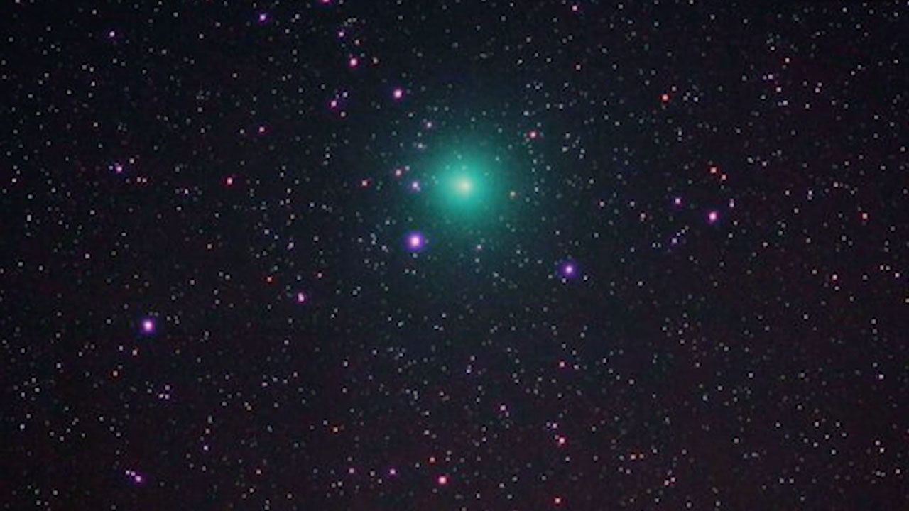 Image result for christmas comet