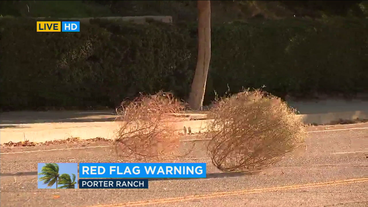 Tumbleweeds blow down the street in Porter Ranch amid high winds and a red-flag warning.