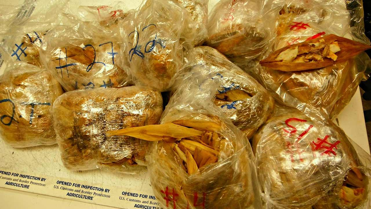 U.S. Customs and Border Protection officials seized and destroyed 450 illegal pork tamales from a passenger at Los Angeles International Airport on Monday, Nov. 2, 2015.