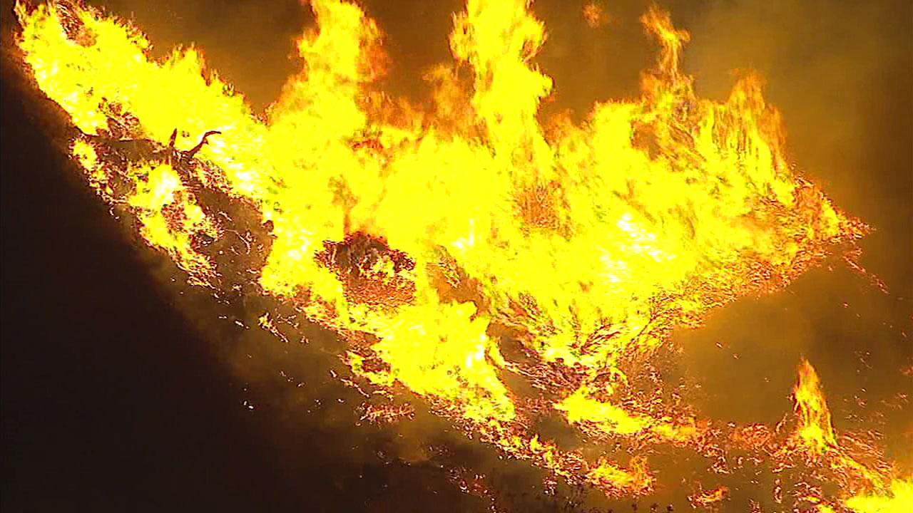 Large flames eat up dry brush in a hillside above California State University, San Bernardino on Sunday, Nov. 11, 2018.