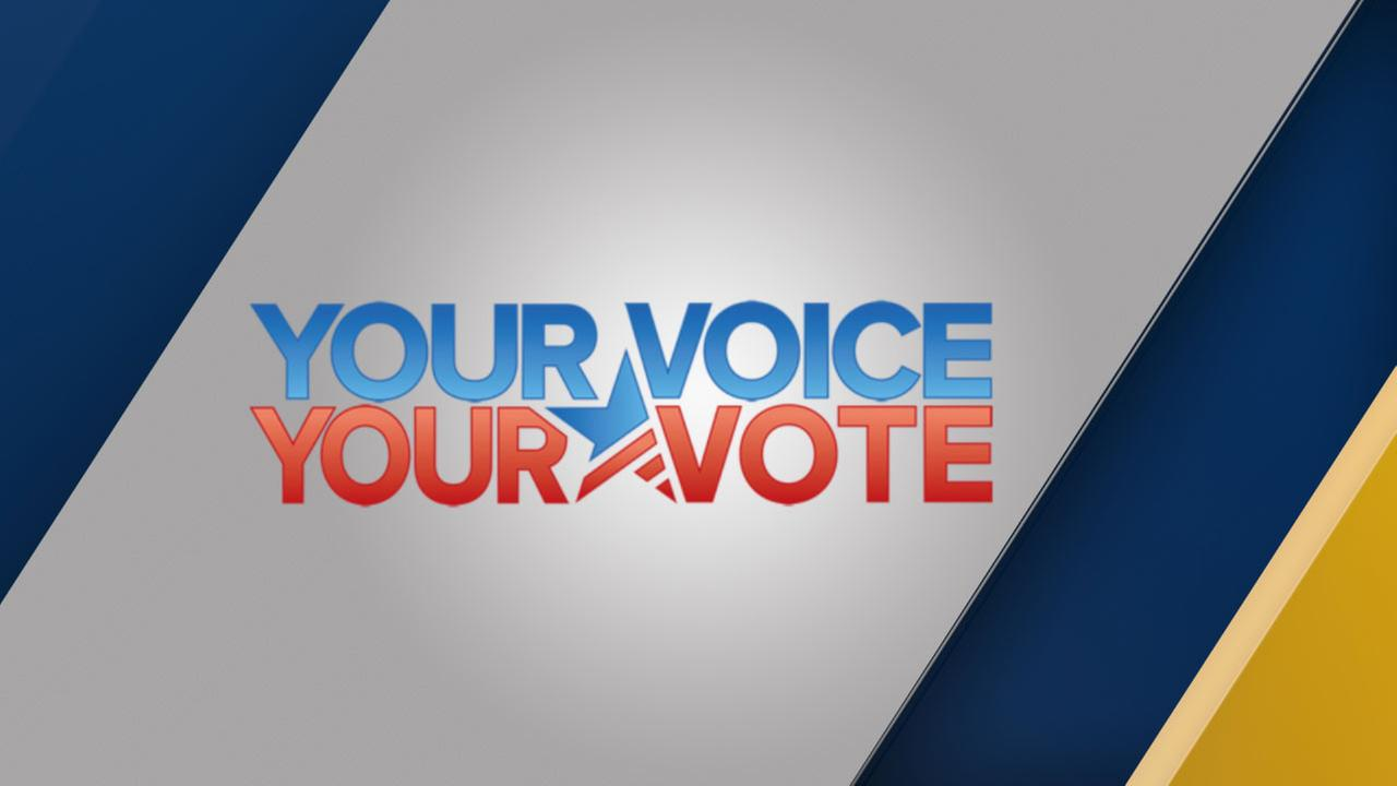Elections: Your Voice, Your Vote