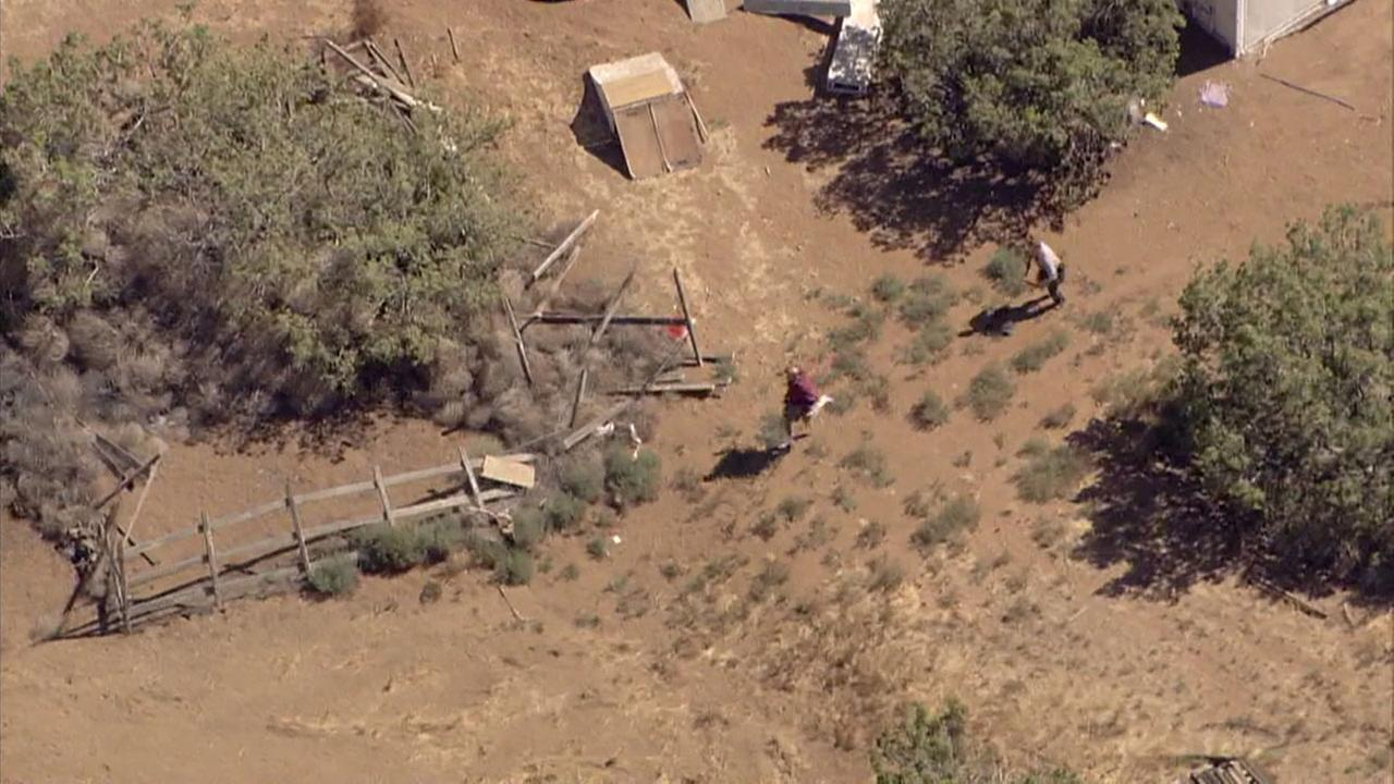 Deputies chase a stolen-car suspect on foot in the Agua Dulce area after a freeway pursuit.