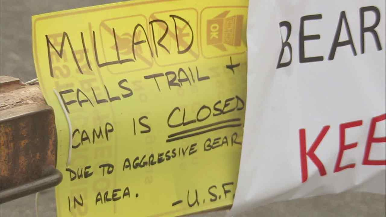 A sign indicates the closure of Millard Canyon campgrounds due to an aggressive bear. The area was reopened on Wednesday, June 29, 2016, officials said.