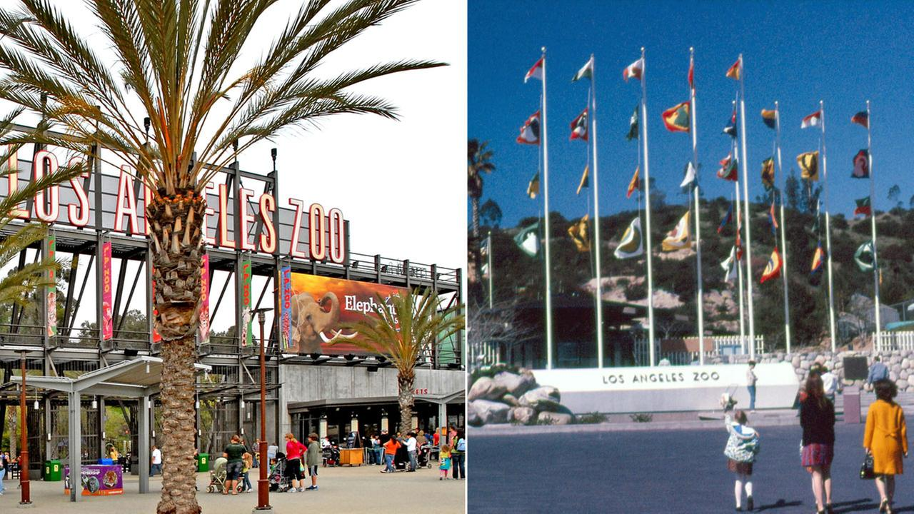Photos of the Los Angeles Zoos front entrances are shown from a day in 2016 to when it first opened on Nov. 28, 1966.