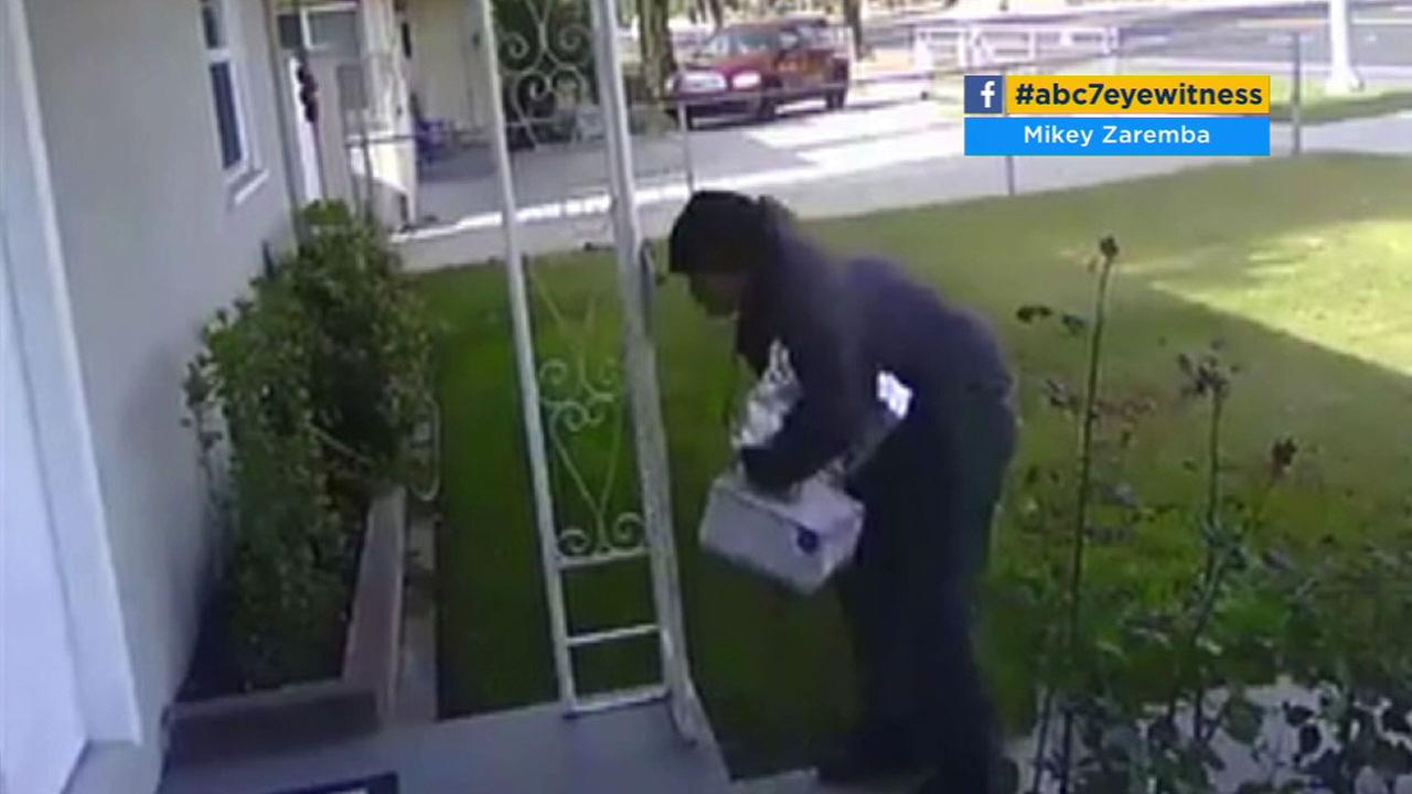 Surveillance video shows a man swiping a package from a Riverside porch, unaware that it contained dog poop.