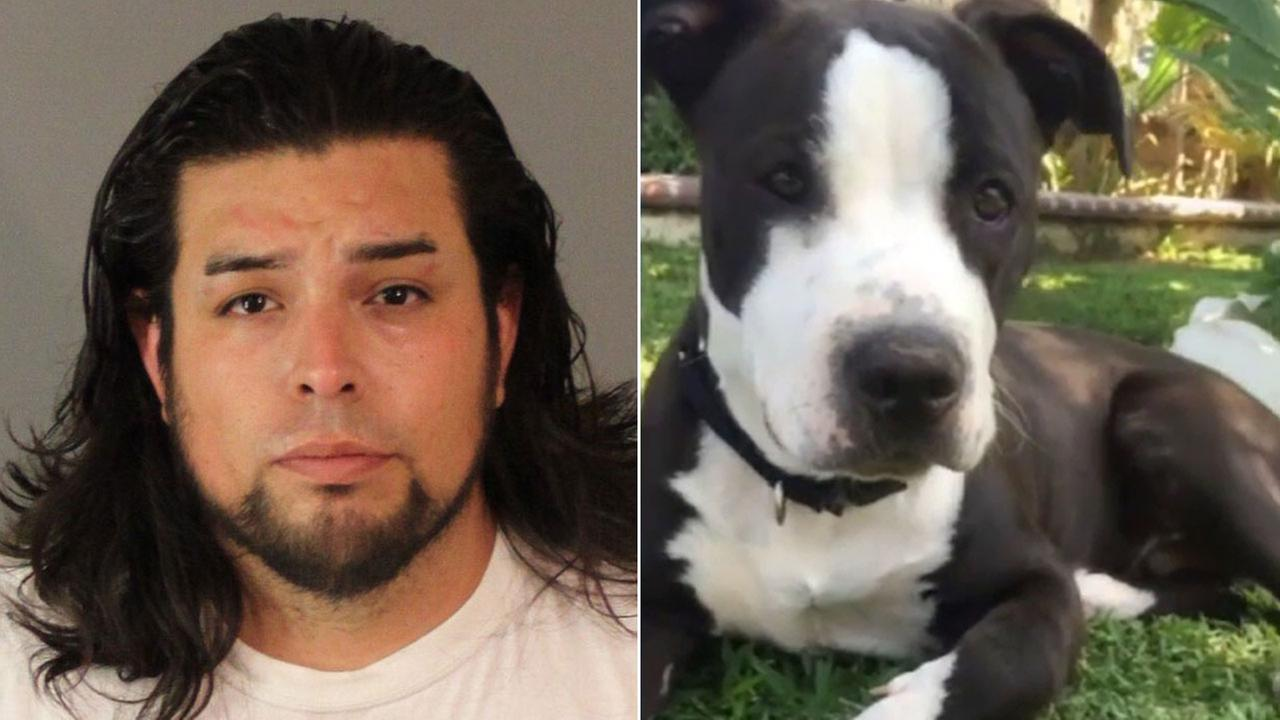 Suspect Rudy Jesus Barajas, 30, of Riverside, is accused of slitting the throat of his neighbors pit bull shortly after the dog killed his poodle.