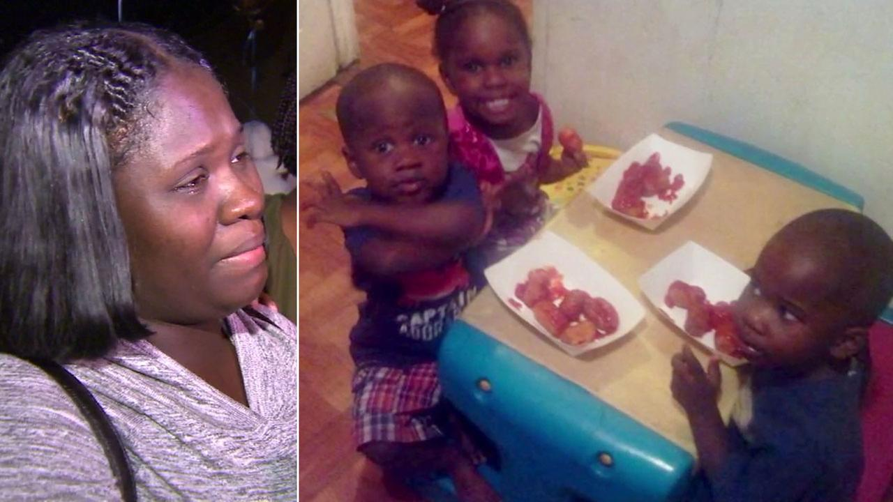 Charlotte Fortson, the mother of twin boys Brenton and Braeson (R), are shown in photos.