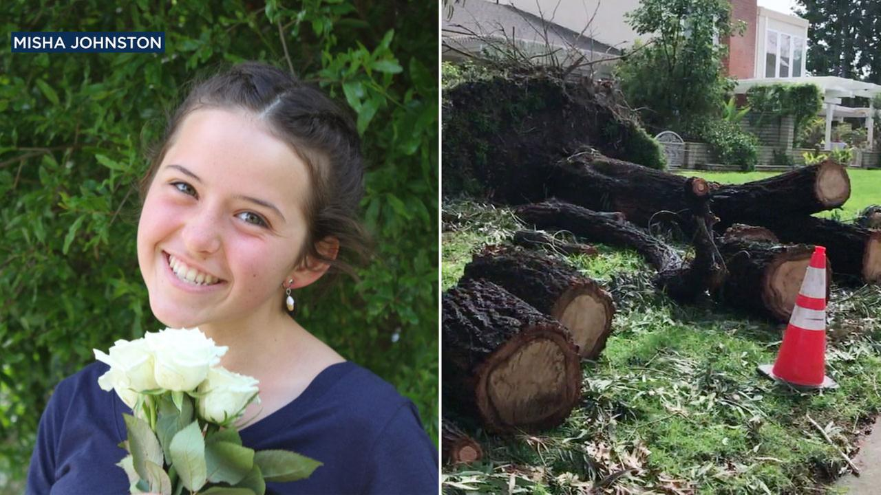 Teresa Johnston, 13, was seriously injured after a tree fell on her during a powerful storm in Irvine on Friday, Feb. 17, 2017.