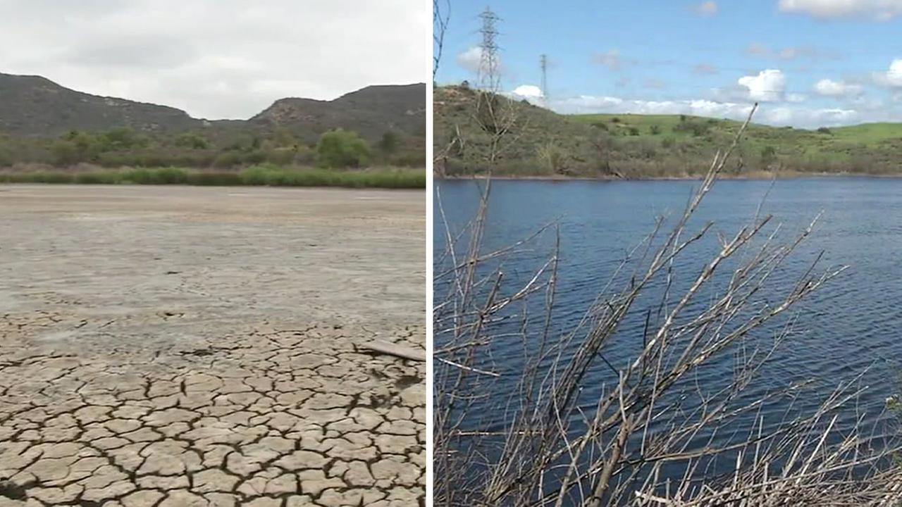 A major victim of Californias drought, Barbaras Lake in Laguna Beach now teems with life.