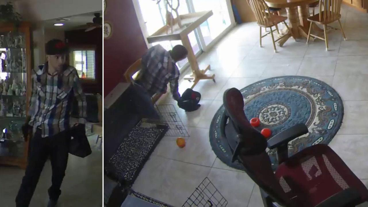 A suspect is caught on camera entering an Arizona home through a doggy door and stealing items from the residence.