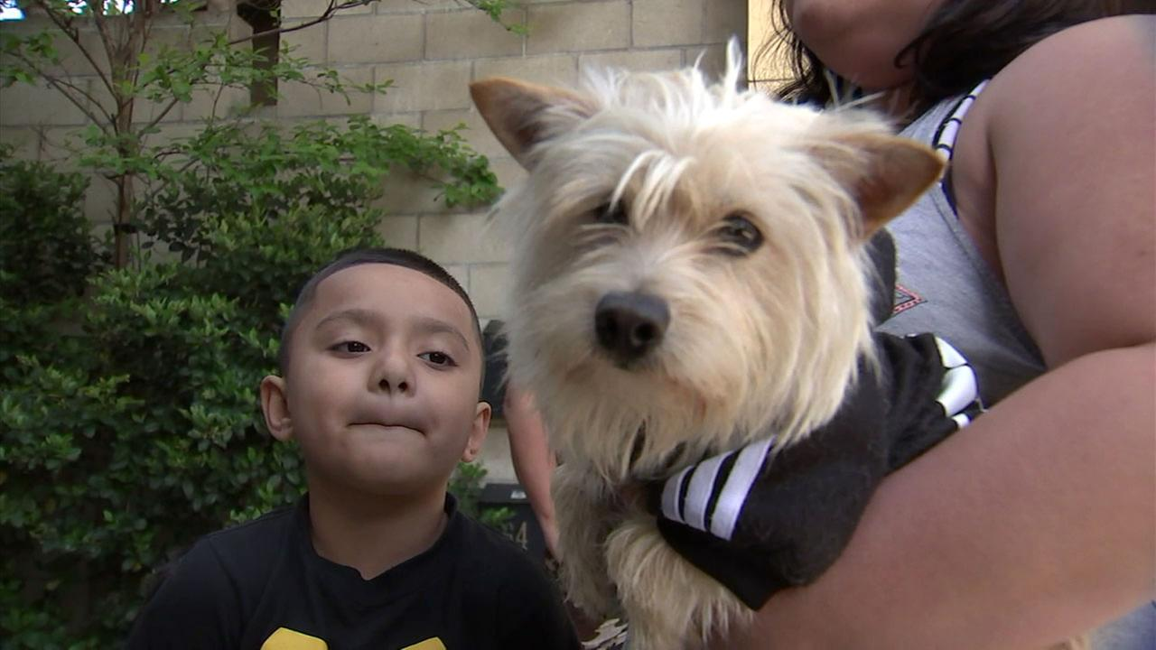 Guadalupe Santibanez and her sons are happy their dog Toby is in good health again after an accident, thanks to medical care funded by Free Animal Doctor.