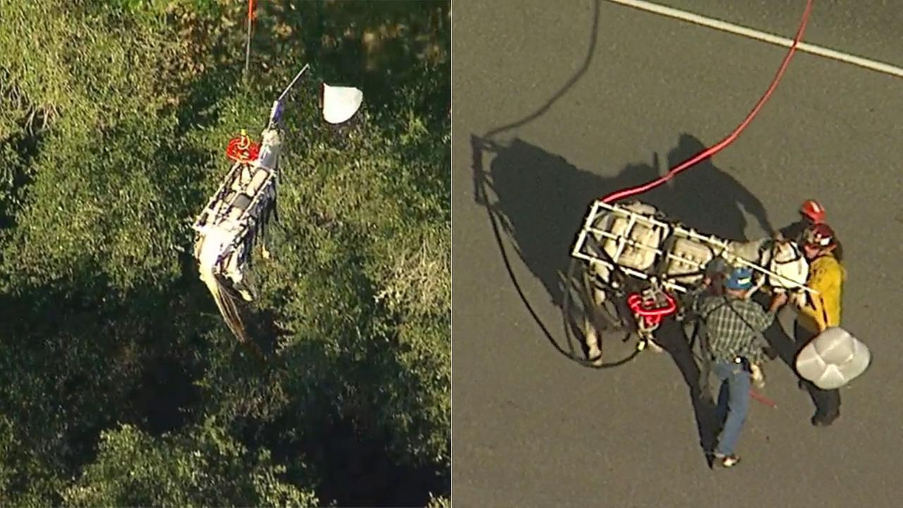A horse was successfully hoisted out of a ravine in Angelus Oaks and airlifted to safety.
