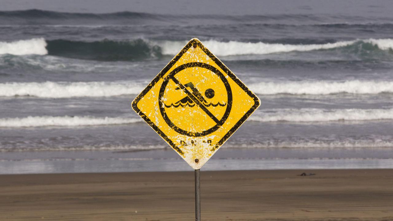 A no swimming sign is displayed at Muriwai Beach near Auckland, New Zealand, Thursday, Feb. 28, 2013.
