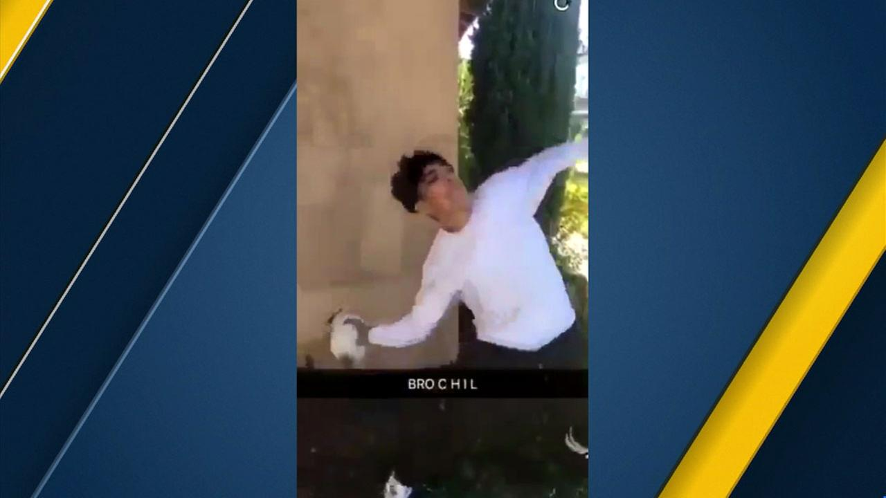 A Snapchat video appears to show a teenager throwing a kitten into the street on Saturday, Dec. 2, 2017.