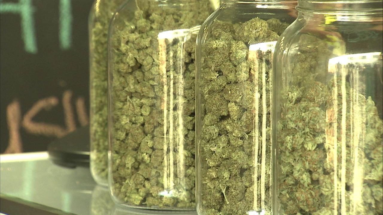 A generic photo of recreational marijuana at a pot dispensary.