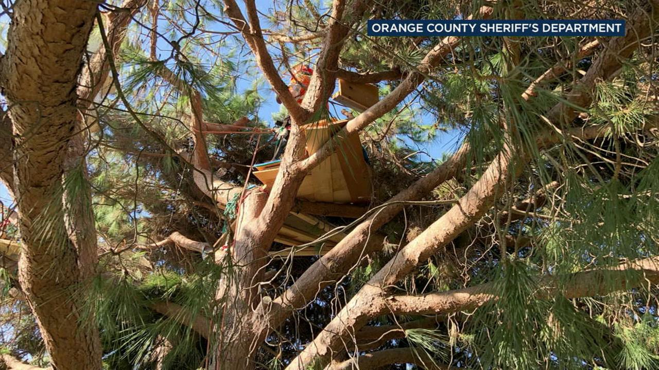 A tree-trimming crew found an elaborate treehouse in Dana Points Lantern Bay Park.