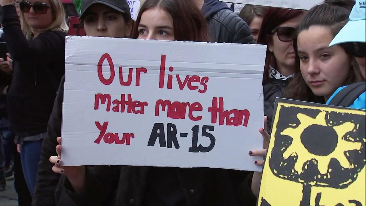 One of thousands of signs spotted at the March for Our Lives event in downtown Los Angeles on Saturday, March 24, 2018.