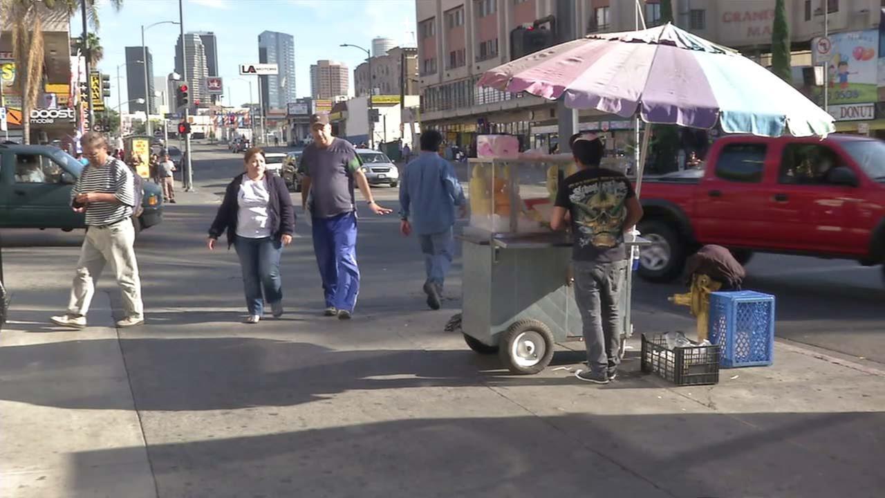 A sidewalk vendor is seen in an undated file photo.