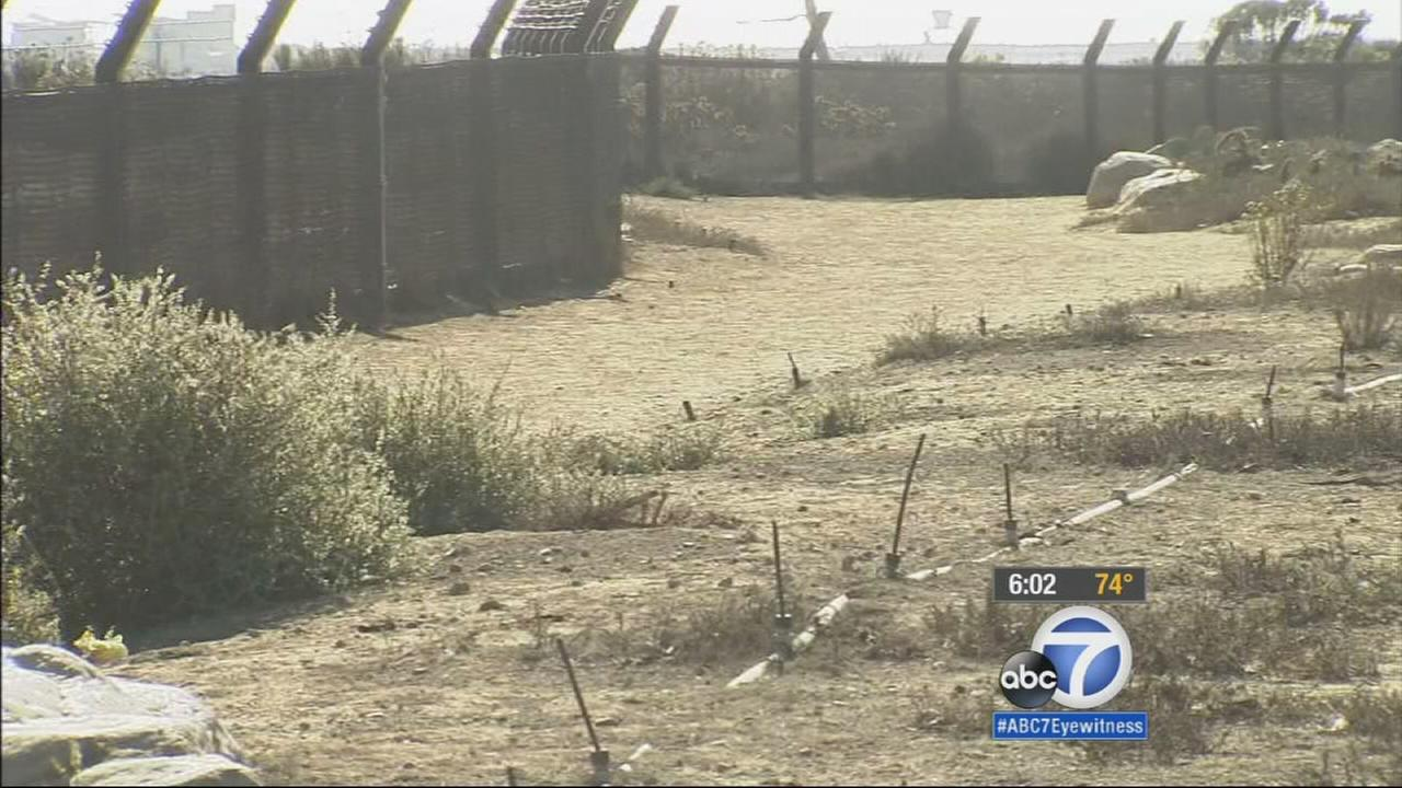 An LAPD officer was arrested for committing lewd acts in the Bolsa Chica wetlands area of Huntington Beach.