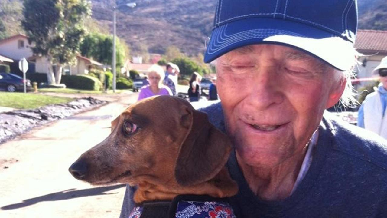 Tinkerbell the Dachshund was reunited with its owner in Camarillo Springs on Sunday, Nov. 2, 2014.