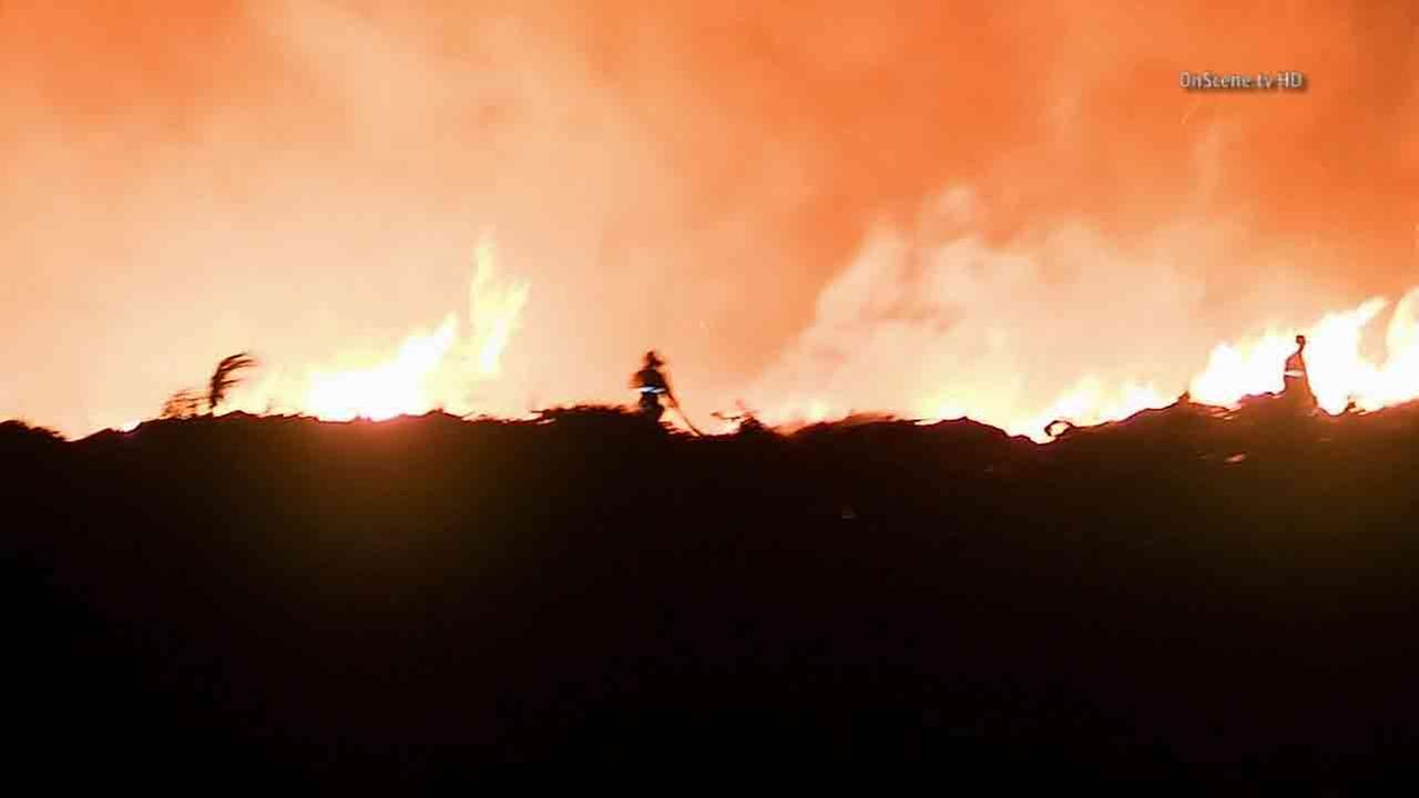 A mulch fire erupted near Grove and Chino avenues in Ontario Saturday, Jan. 24, 2015.