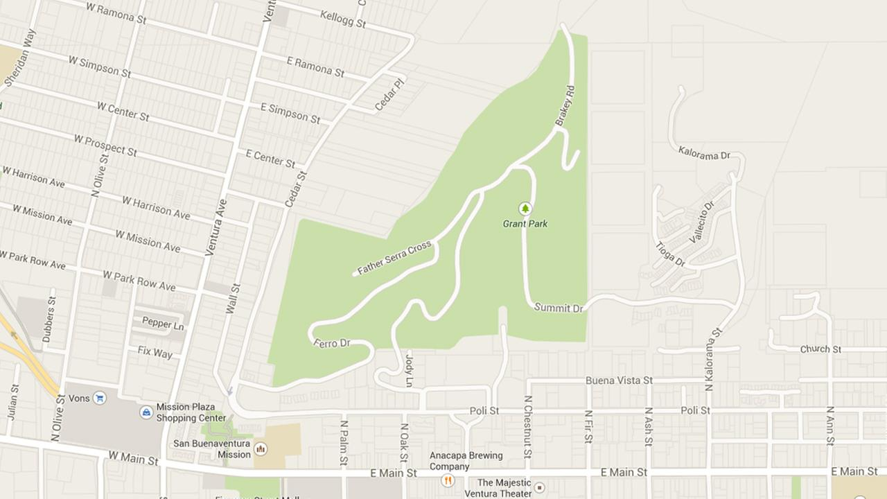 This Google Maps shows Grant Park, where a woman was allegedly slapped on the butt during a run on Sunday, Jan. 25, 2015.