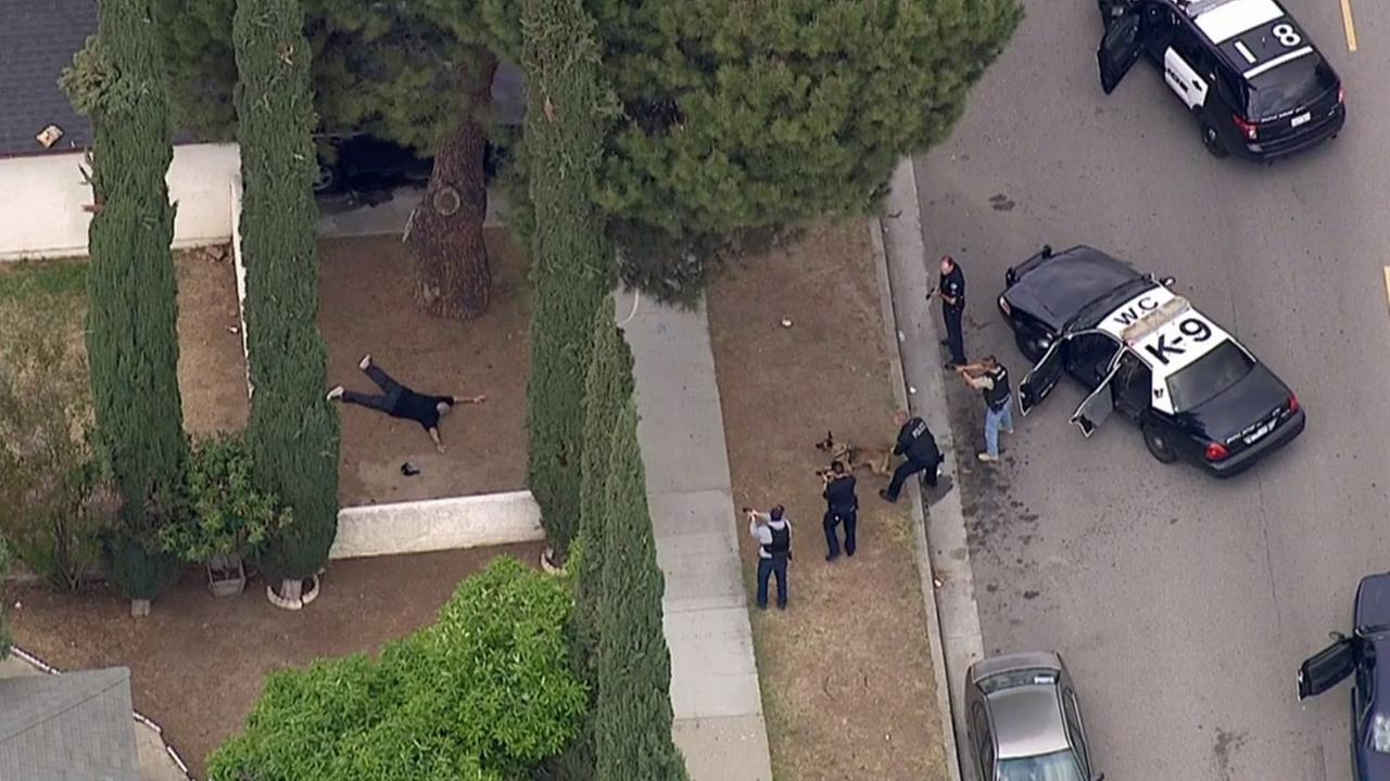 West Covina police take a man who led them in a high-speed pursuit into custody in Azusa on Monday, May 18, 2015.