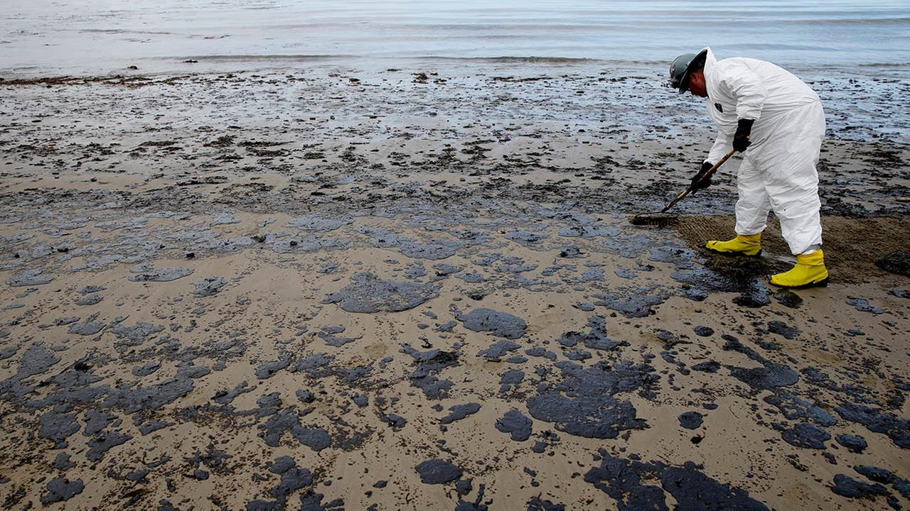A worker removes oil from the beach at Refugio State Beach, north of Goleta, Calif., Thursday, May 21, 2015.