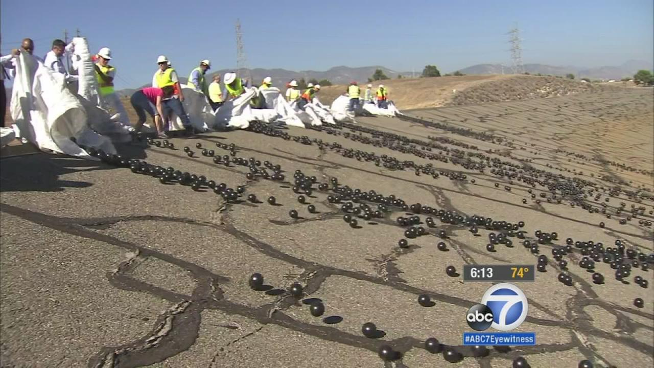 City officials released 20,000 shade balls into the Los Angeles Reservoir Monday, Aug. 10, 2015, the final step in a $34.5 million water quality protection project.