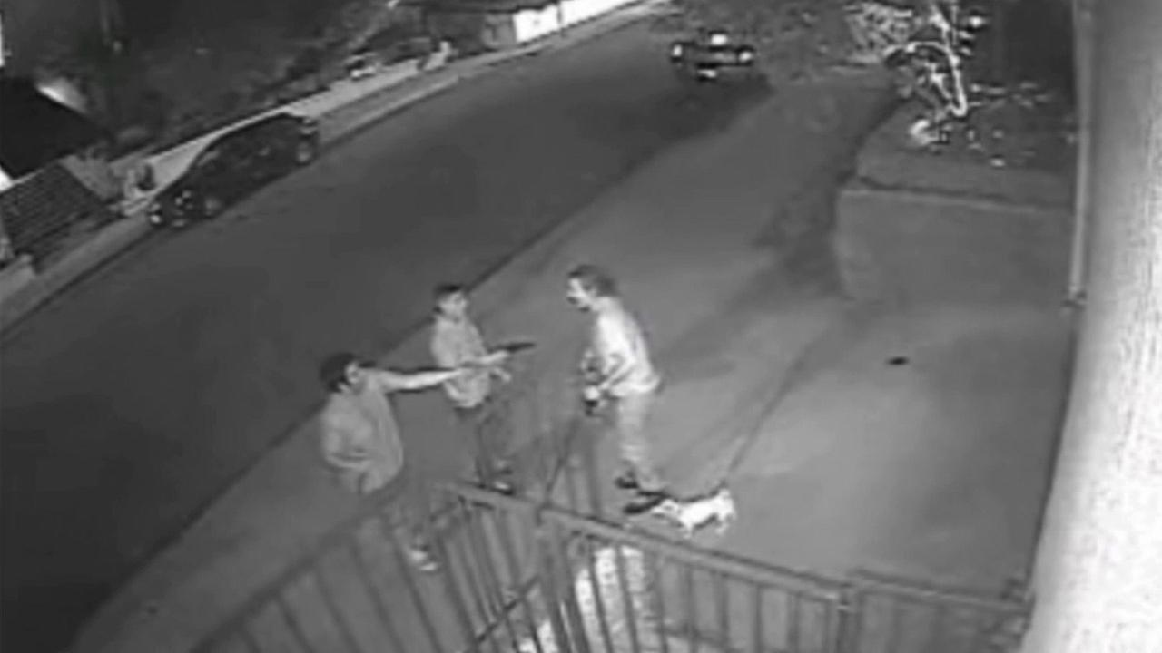 Surveillance video shows two suspects pointing a knife and a gun at a man walking his dogs in West Hollywood during a robbery.