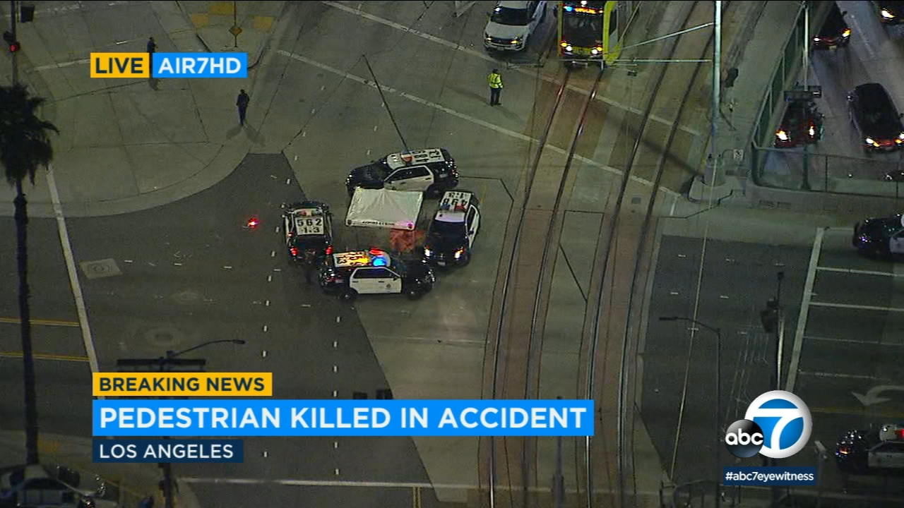A pedestrian was struck and killed by a vehicle just south of downtown Los Angeles Thursday evening, officials said.