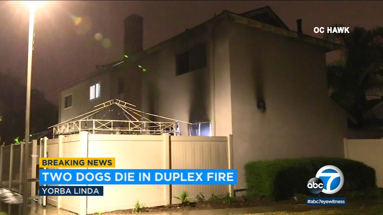 Two dogs were killed in a duplex fire in Yorba Linda Wednesday, Jan. 16, 2019.