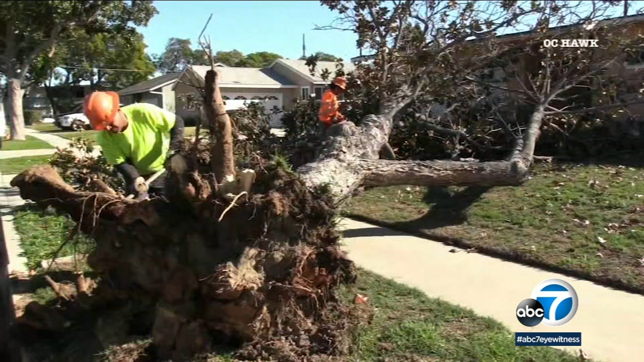 Powerful winds pummeled Southern California on Monday, knocking down trees and power lines, and they could continue for at least another day.