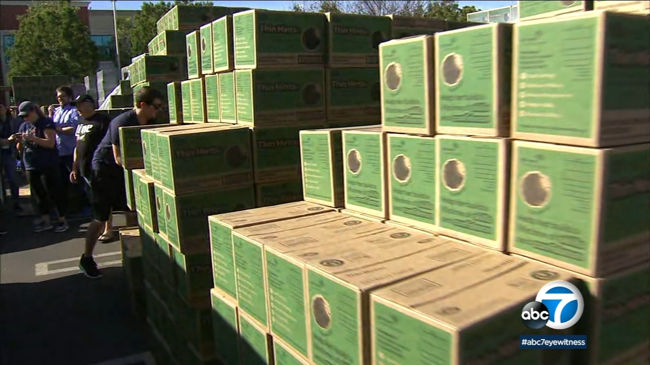Piles of boxes of Girl Scout Cookie Thin Mints.