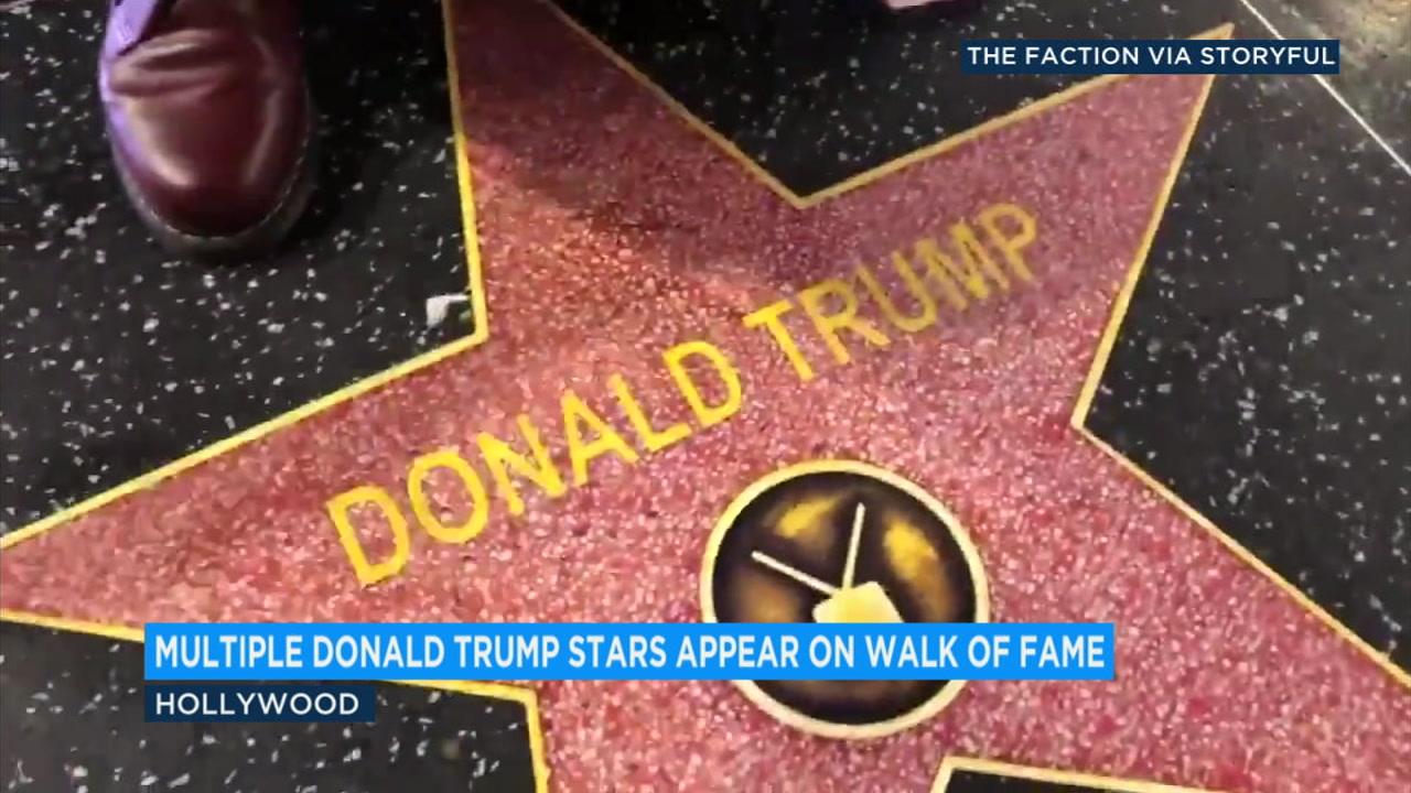 Trump stars
