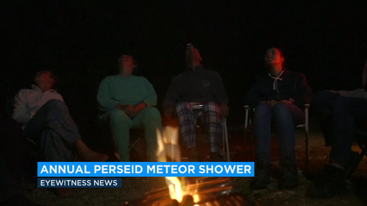 Perseid meteor shower to peak in sky overnight