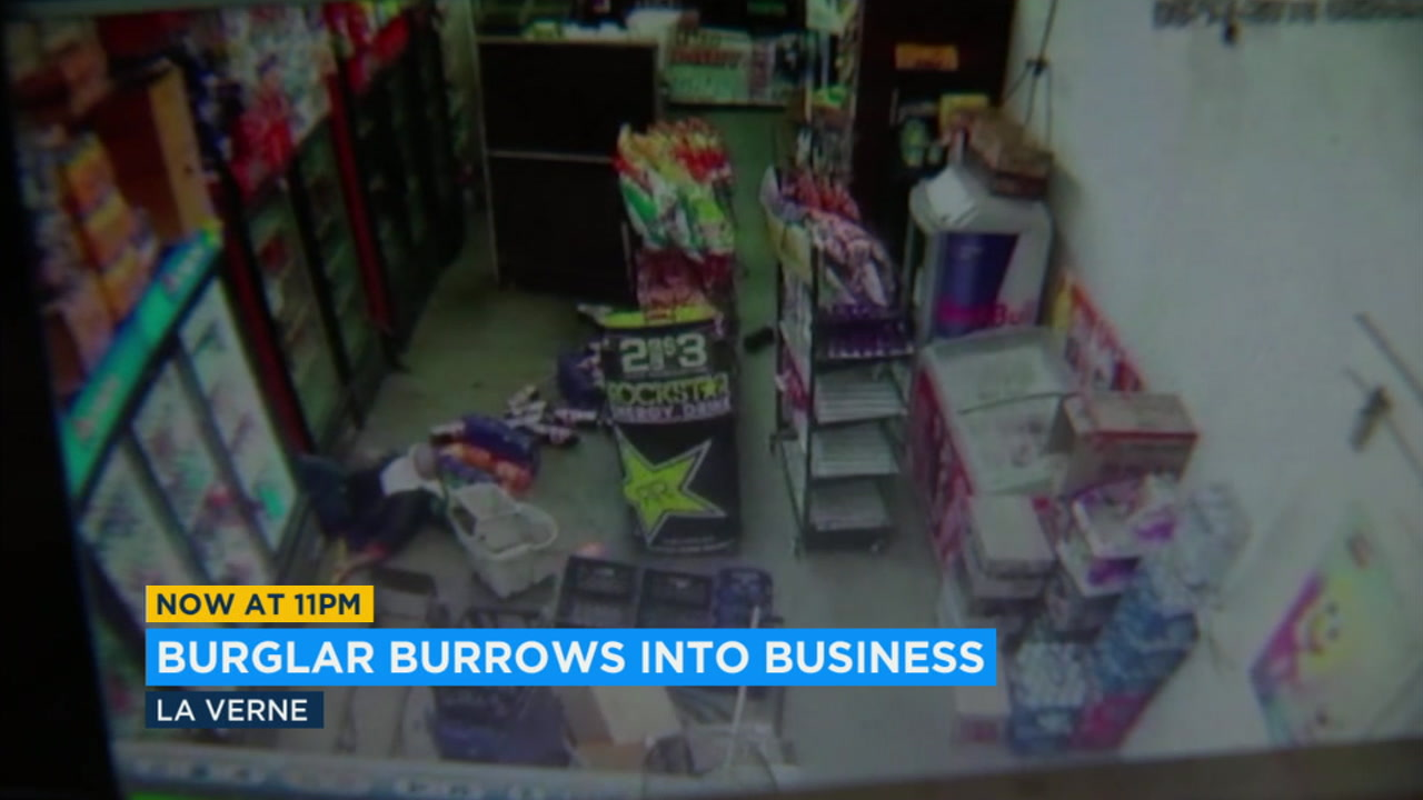 A suspected burglar who burrowed into a business in La Verne ended up behind bars.