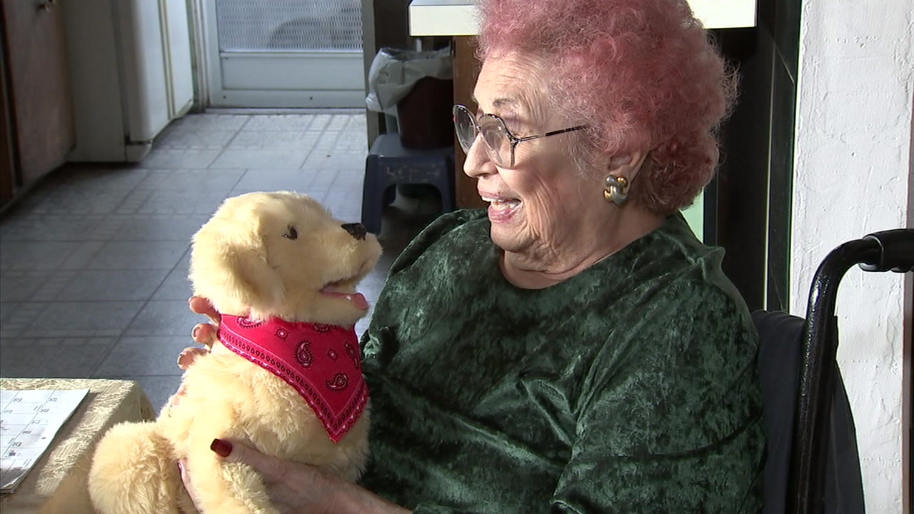 Lena Haberman, 91, is seen with a robotic golden retriever named Rudy.