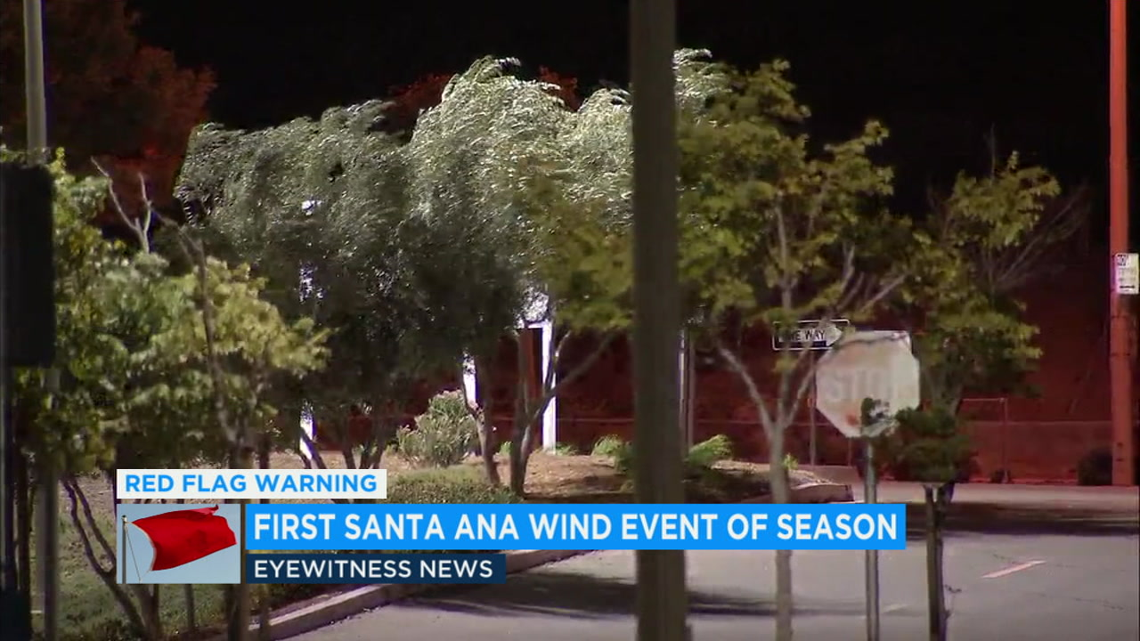 Strong winds hit trees in Santa Clarita amid a Santa Ana wind event on Monday, Oct. 15, 2018.