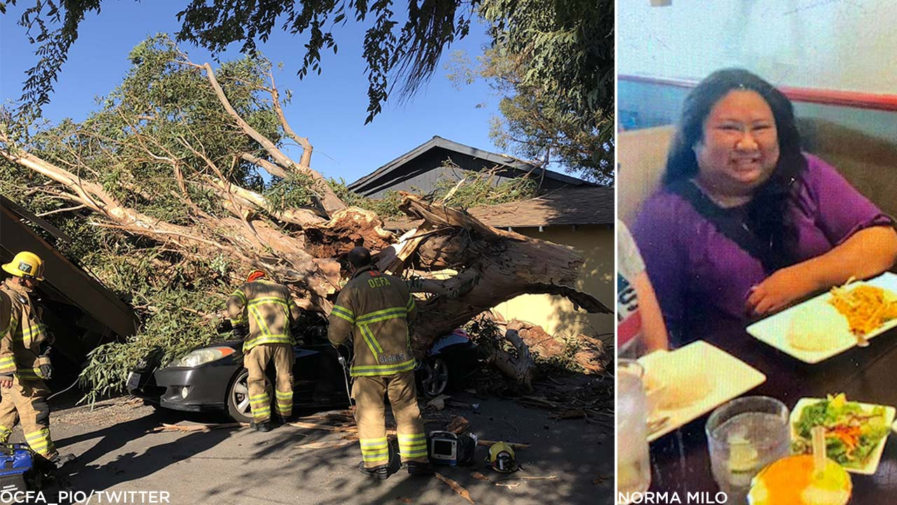 (Left) O.C. Fire Authority firefighters at the scene of a tree fall that killed a woman inside of a car in Tustin Monday, Oct. 15, 2018. (Right) Undated image of Denden Bermas.