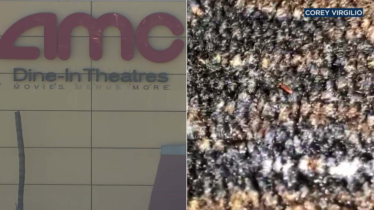 Disturbing cellphone video shows tiny bugs crawling all over the carpet at the AMC Theatre at the Ontario Mills Mall.