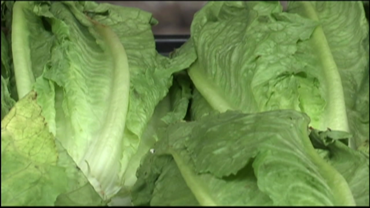 Nine people in Los Angeles County have been infected with E. coli from contaminated lettuce, officials say.