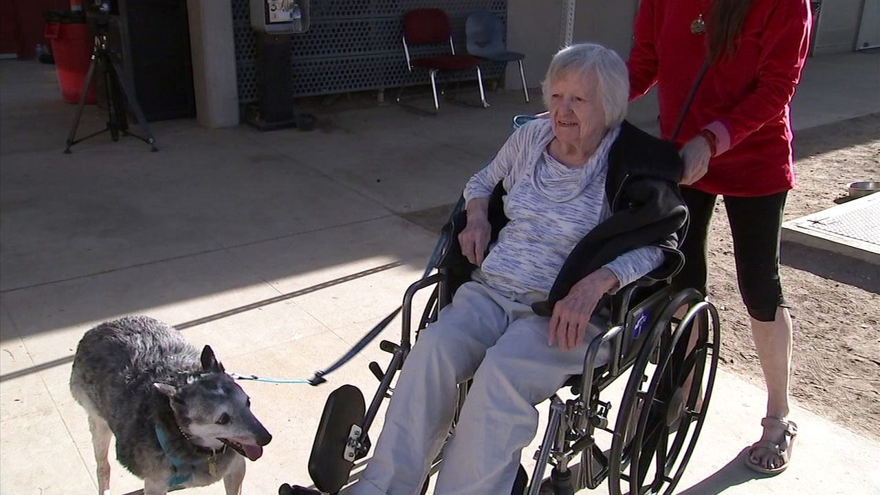 After losing everything in the Woolsey Fire and desperately looking for a new place to stay, a 97-year-old woman and her four-legged best friend have found a home.