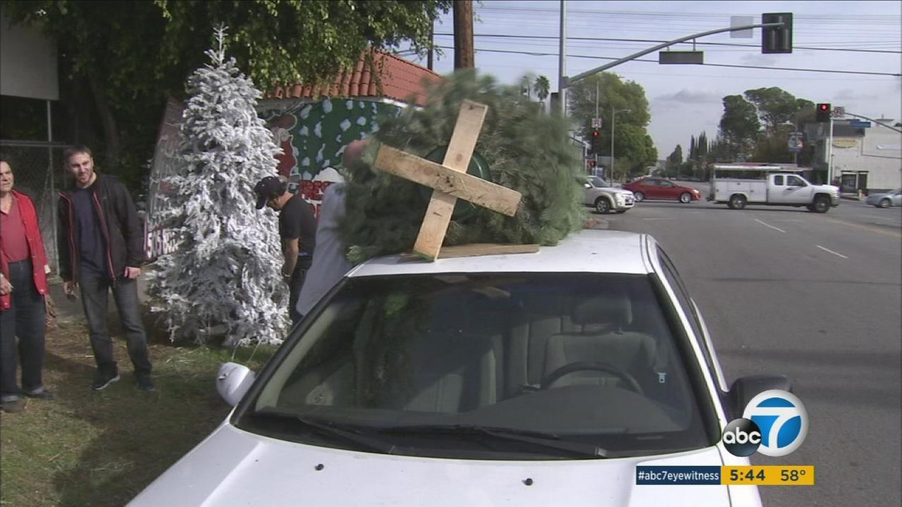 A Toluca Lake resident puts a Christmas tree on the roof of his car on Christmas Eve, Thursday, Dec. 24, 2015.