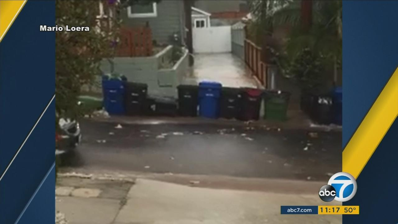 This parade of trash cans running wild in Highland Park was captured by Mario Lorea on Tuesday, Jan. 5, 2016.