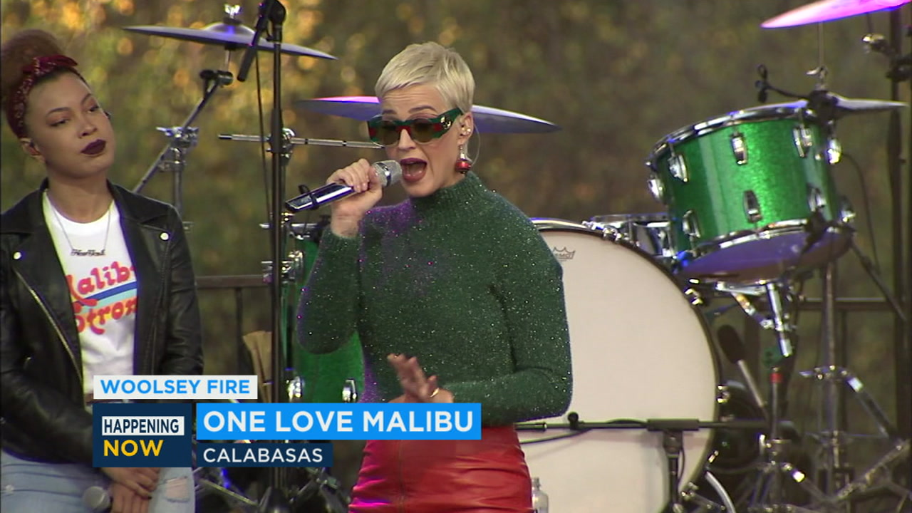 Katy Perry was among the artists performing at One Love Malibu to help victims of the Woolsey Fire.