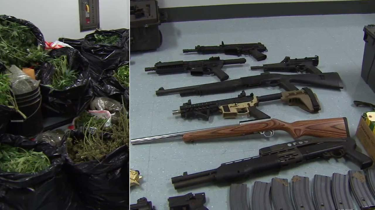 Los Angeles police seized $500,000 worth of marijuana and 27 weapons during a drug bust on Thursday, April 15, 2016.