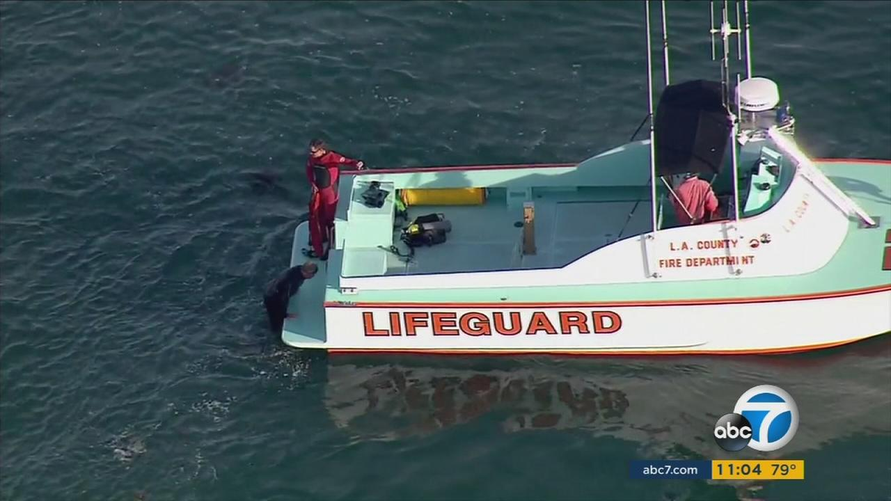 Dive teams search for a missing swimmer who vanished off the coast of Manhattan Beach.