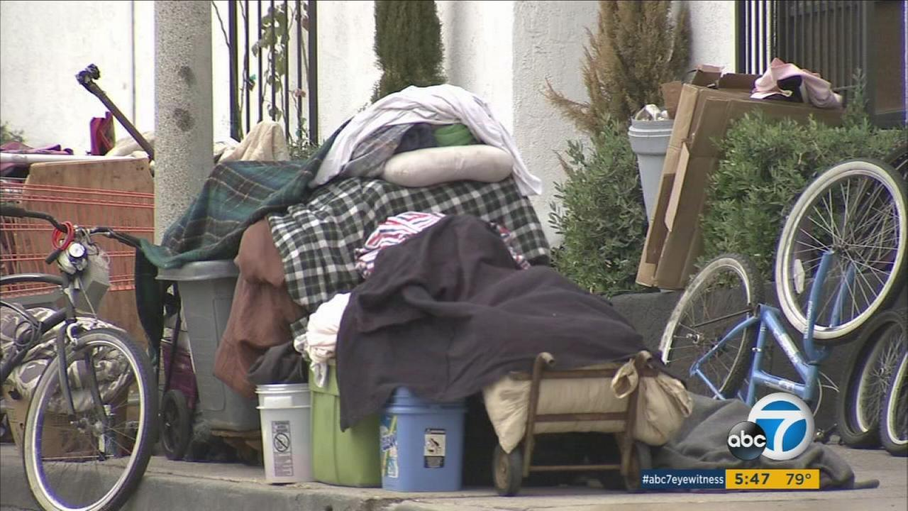 After months of meetings and crunching numbers, the Los Angeles City Council approved a resolution to place a bond measure on the November ballot to pay for homeless housing.