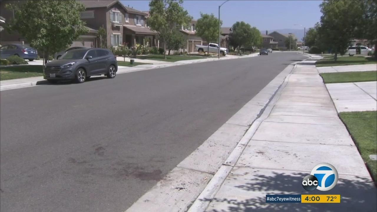 The scene on Monday, July 4, 2016, where a retired police dog attacked a man in Eastvale.